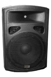 Studiospares S15P Loudspeaker